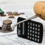 Vzorový rodinný rozpočet