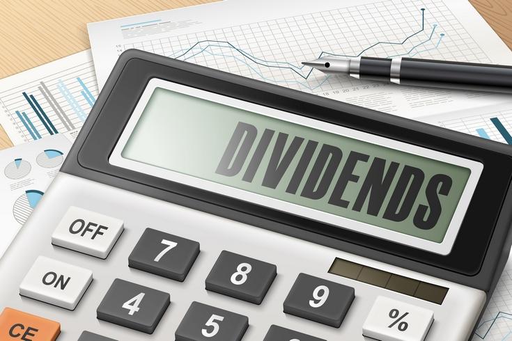 Kouzlo dividendových akcií